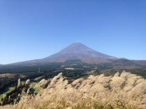 十里木高原からの富士山とすすき