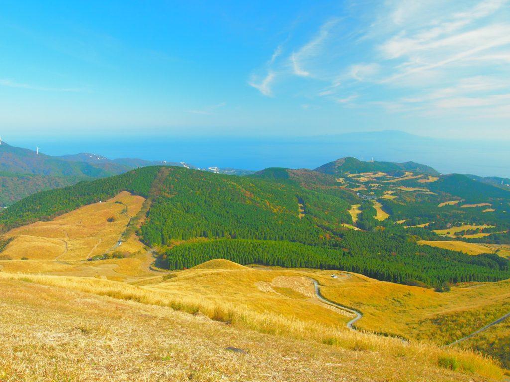 【静岡の絶景】やはり細野高原×すすきの季節は最高です!