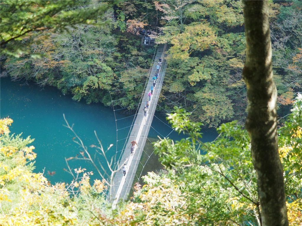 【静岡の絶景】紅葉の寸又峡と夢の吊り橋にいってきた!