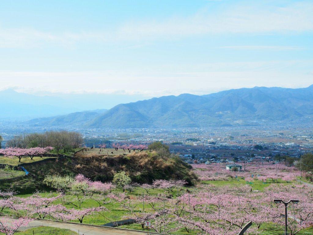 【山梨の絶景】一宮町花見台と笛吹の桃源郷に行ってきました。