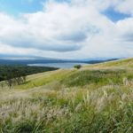 【絶景ロード】山中湖パノラマ台に続くすすきロードがとても綺麗でオススメ【山梨】