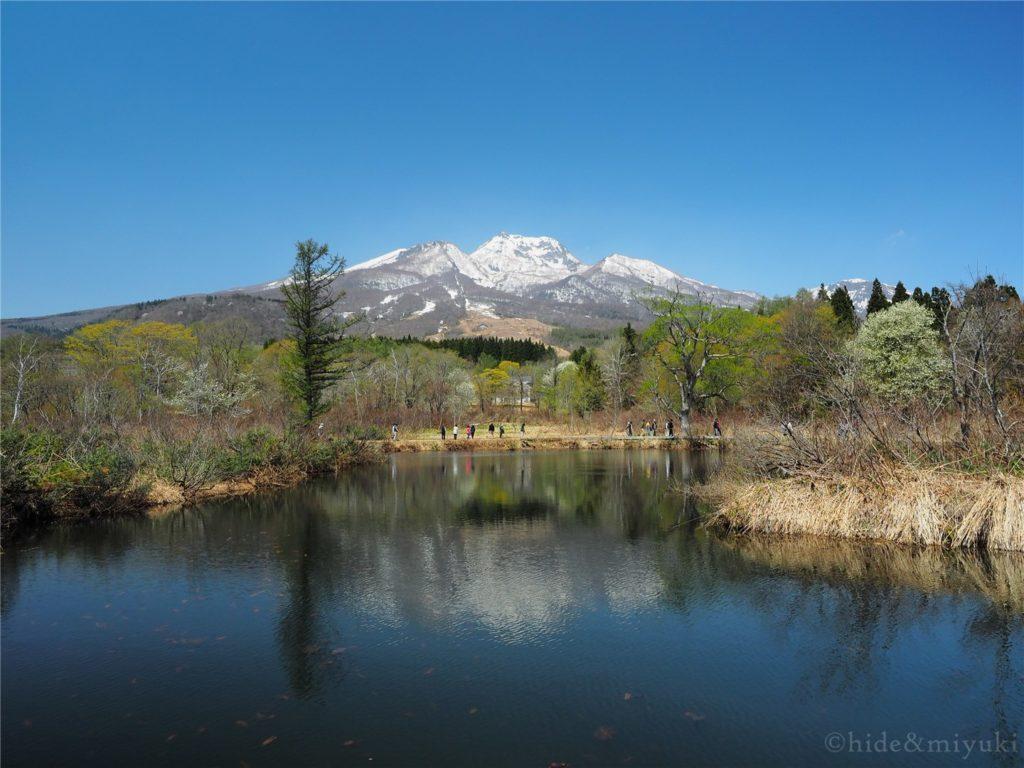 【新潟の絶景】いもり池に行ってきました!いもり池越しの妙高山と黒姫山の景色は素晴らしかったです…