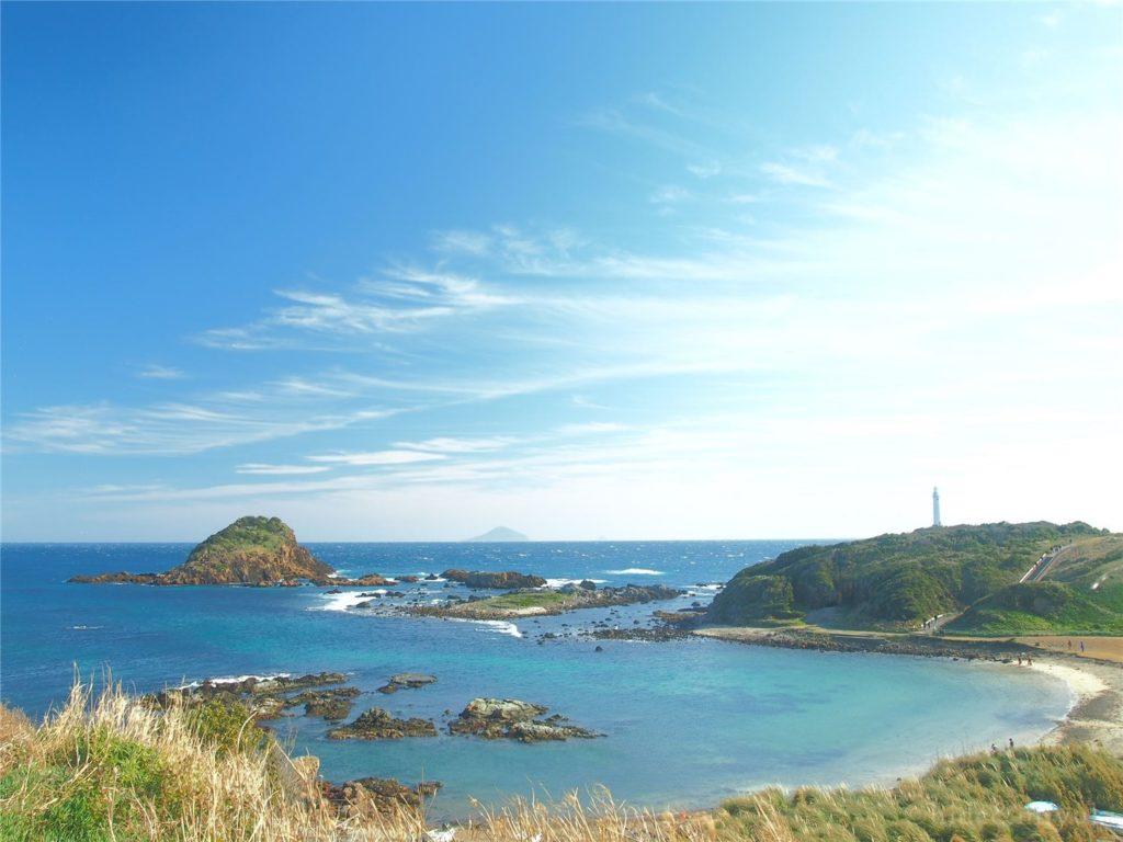 【静岡の絶景】水仙、青空、青い海…下田の絶景「爪木崎」についてまとめてみます!