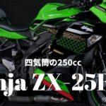 (2019/10/23更新)【Ninja ZX-25R】ついに来た!!Kawasakiの250cc四気筒バイク!!【Ninja250の四気筒版です】