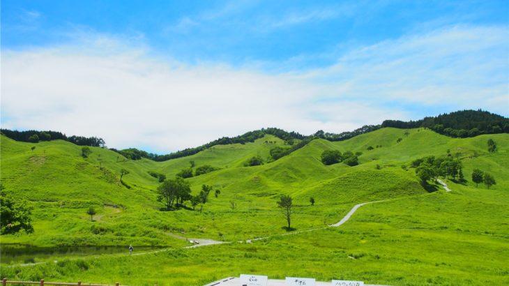 砥峰高原の全景を眺める