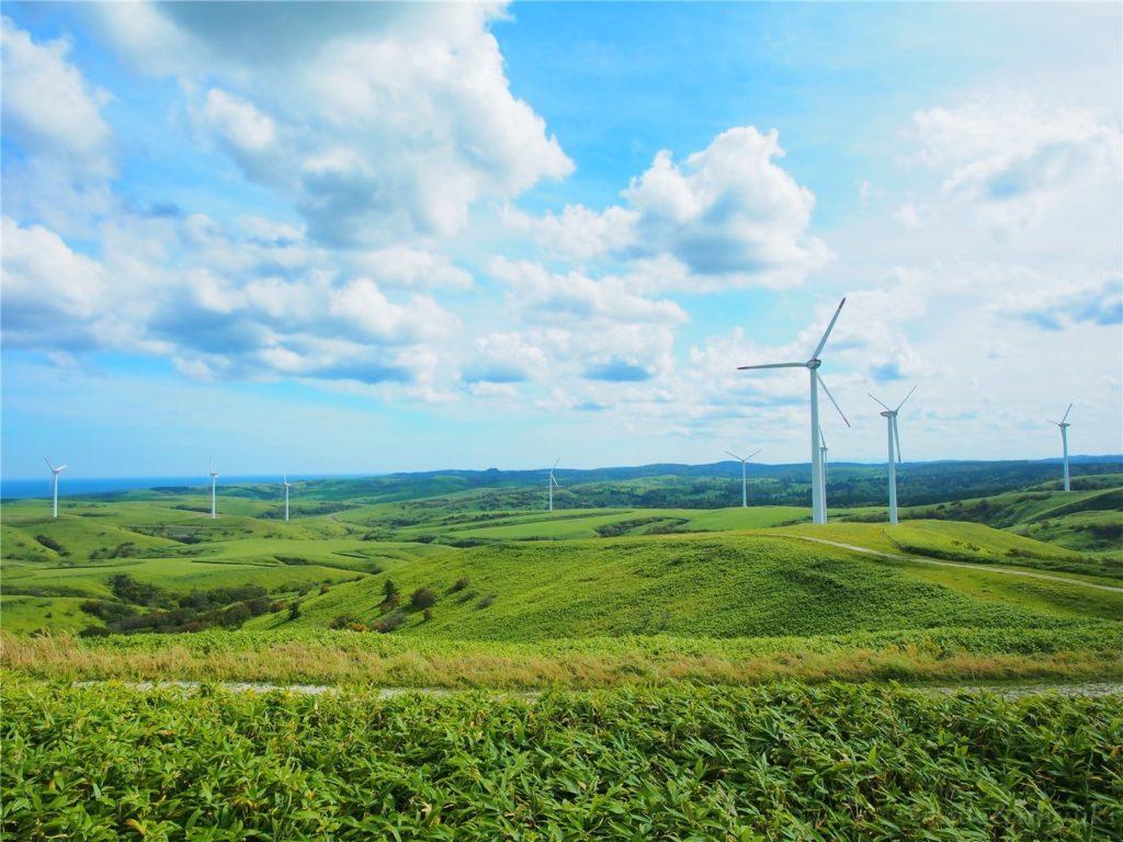 【北海道の絶景】宗谷丘陵サイコー!程よい丘感と見晴らしのいい道、風車のある景色…何度も往復しました笑